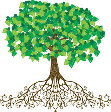 apple tree with roots clipart. tree with roots illustration. pretty and flourishing. apple clipart a