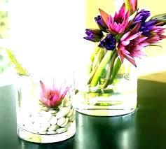 glass vase centerpieces glass vase centerpiece ideas r centerpieces decoration square large glass cylinder vase centerpiece