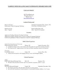 resume language resume format pdf resume language resume language native help writing a curriculum vitae custom home design resume cv cover