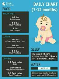 10 Month Baby Food Chart 10 Month Old Baby Food Chart