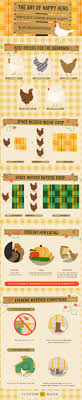 How To Keep Your Backyard Chickens BugFree  Popular ScienceHow To Keep Backyard Chickens