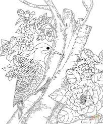 Small Picture Yellowhammer and Camellia Alabama State Bird and Flower coloring