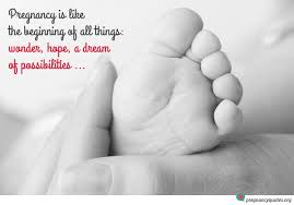 Pregnancy Quotes Cool Pregnancy Is The Beginning Of All Things Inspirational Quotes