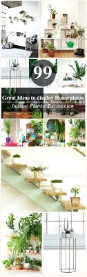 office plant displays. Office Plant Displays Nature At Work Ideas To Display Houseplants: Large Size
