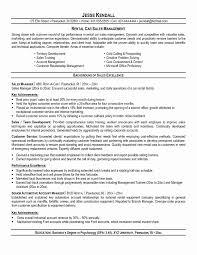 Retail Resume Format Download Unique Retail Ceo Resume Samples