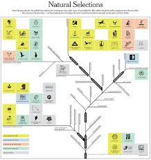 Natural Selection Diagram Process Flow Chart Onefive