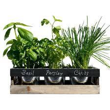 viridescent indoor herb garden kit