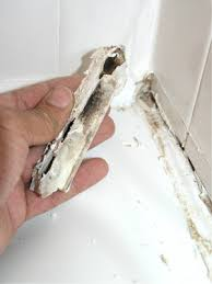 then use a putty knife or a drywall tool couldn t find my putty knife to remove the old caulk