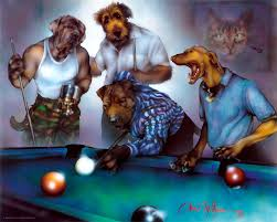 dogs playing pool by danmcmanis