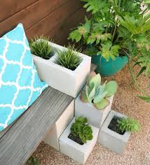 Easy DIY Succulent bench using cinder blocks and stained wood. Cheap and  quick backyard garden