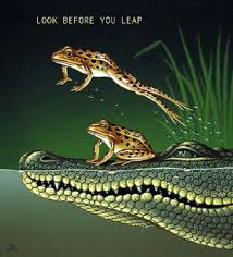 look before you leap essay an idiomatic essay on look before you look before you leap essaylook before you leap