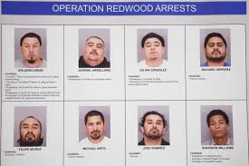 San Jose Murder Suspect 7 Others Arrested In Gun Crime