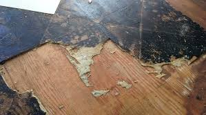 how to remove linoleum from concrete how to remove linoleum flooring from concrete how to remove