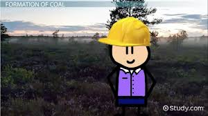 What Is Coal Facts Types Formation Uses Video