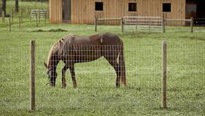 wire farm fence. Wire Farm Fence G