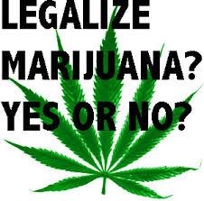 marijuana be legalized for medical purposes essay should marijuana be legalized for medical purposes essay