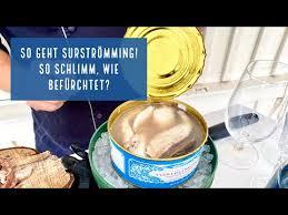 Check spelling or type a new query. Das Musst Du Uber Surstromming Wissen Schwedenhappen Ch