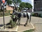 imagem de Belo Oriente Minas Gerais n-14