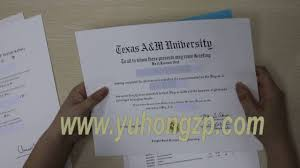 make a diploma fake college diploma and transcript fake diploma  make a diploma fake college diploma and transcript fake diploma certificate maker buying degrees