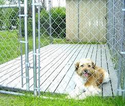 outdoor dog kennel ideas indoor