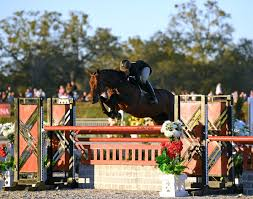 Patricia Griffith Wins the $50,000 USHJA International Hunter Derby at HITS  Ocala - The Plaid Horse Magazine