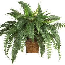 artificial plants for office decor. Dcd8a936fc56e2248d6b6ccda5b3fe3e.jpg Artificial Plants For Office Decor \