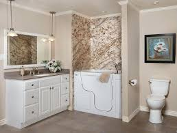walk in bathtubs with shower reviews for seniors canada
