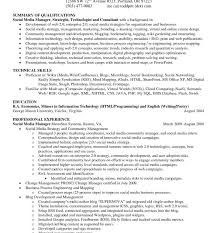 Professional Summary On Strategic Management Resume Also Excellent ...