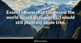 Martin Luther Quotes Awesome Martin Luther Quotes BrainyQuote