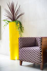 The vibrant yellow planter is perfect for the commercial office and went  well with the retro