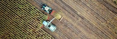 Resultado de imagem para O perdão bilionário que Bolsonaro quer dar ao agronegócio