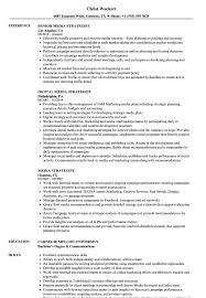 Digital Strategist Resume Media Strategist Resume Samples Velvet Jobs