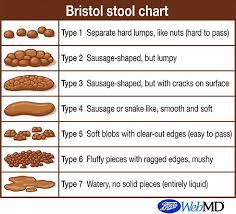 Bristol Stool Scale Diagnosis Constipation Bristol Stool