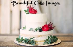 New Cake Images Show Beautiful Upcoming Birthday Cake Trends