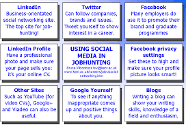 using social media in jobhunting chart of social media in job hunting there are different sites for professional networking