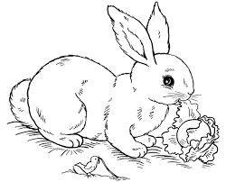 Small Picture Free Printable Rabbit Coloring Pages For Kids