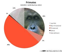 Chart Endangered Primates