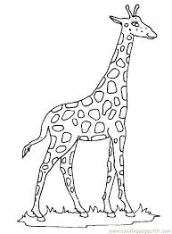 Giraffe Printable Template Mask Zebra Giraffe Template Printable Free Blue Templates For Google
