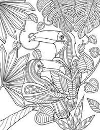 Small Picture Toucan bird Abstract Doodle Zentangle Coloring pages colouring