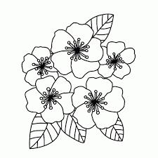 Afbeeldingen Bloemen Kleurplaten Kleurplaat Vor Kinderen 2019