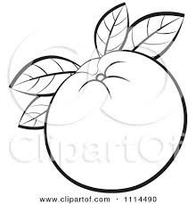 black and white orange clipart. Perfect Orange Orange Clip Art For Black And White Clipart F