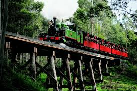 guide to the dandenong ranges tourism