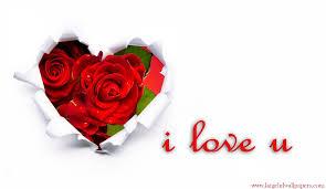 i love u rose hearts desktop backgrounds 2016 wallpapers large hd desktop background