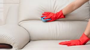 the best upholstery cleaner removing a stain from a leather sofa