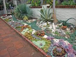 Small Picture 43 best succulent plants images on Pinterest Succulents garden