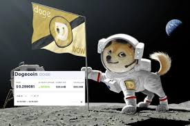 It was initially introduced as joke but dogecoin quickly developed its own online community and reached a market capitalization of us$60 million in january. Euah9wosslnn3m