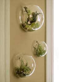 Ideas Of How To Freshen Up The Atmosphere At Home! Wall TerrariumHanging  Glass TerrariumAir Plant ...