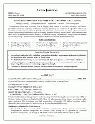 Executive Resume Examples 13 Cfo Resume Sample Manufacturing