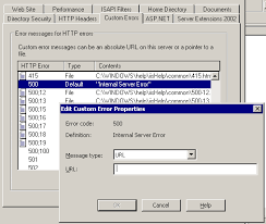 Set Custom 500 Handler in IIS