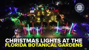 Christmas Light Displays In Tampa Christmas Lights At The Florida Botanical Gardens Taste